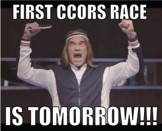 excited-ccors-arnold-2
